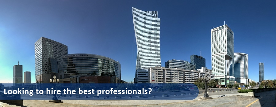 Looking To Hire The Best Professionals